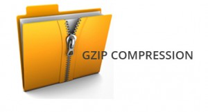 gzip_compress